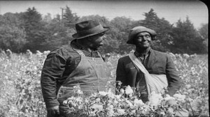 Pardon Us - L & H on the run in blackface, in a cottonfield